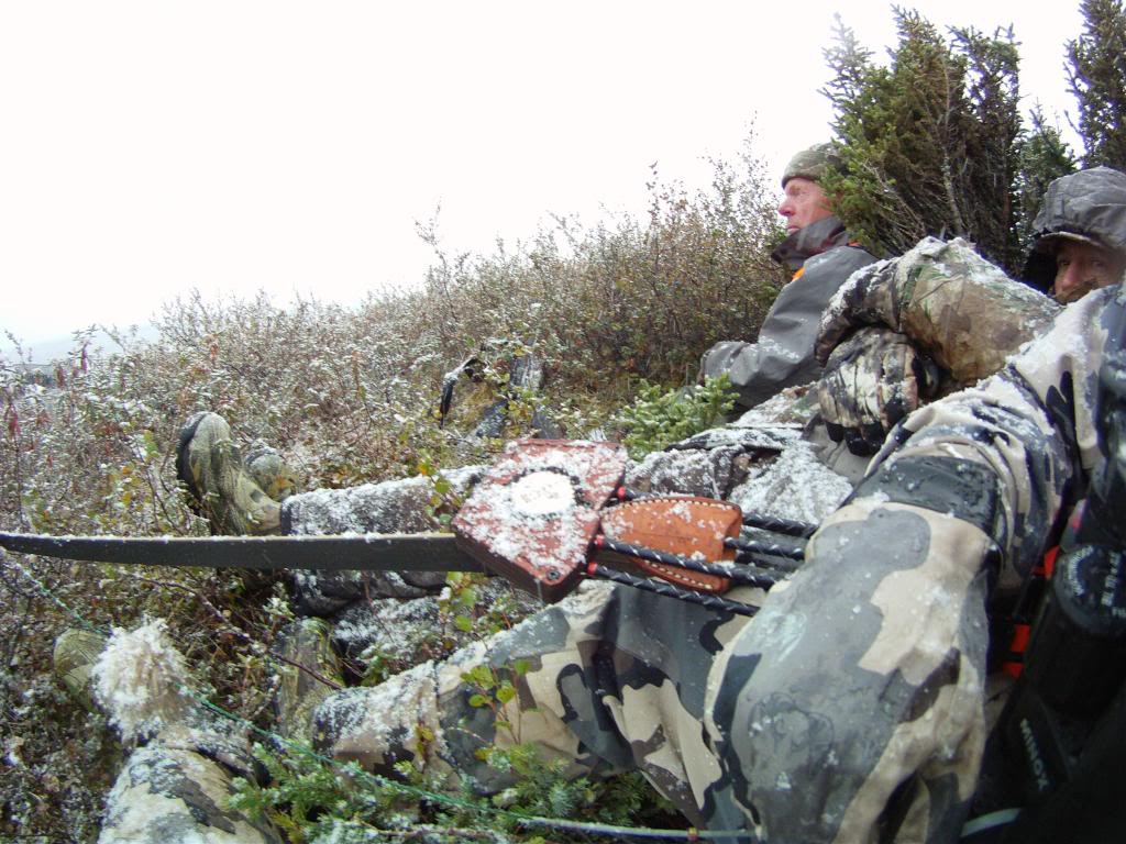 pictures of my first Quebec Labrador Caribou Hunt with longbow