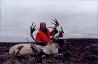 Hunting for Caribou